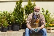 Antes de comprar as mudas para o seu jardim, veja se são adequadas para o tipo de solo