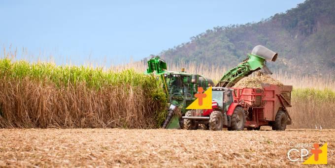 Vantagens da palhada no cultivo da cana