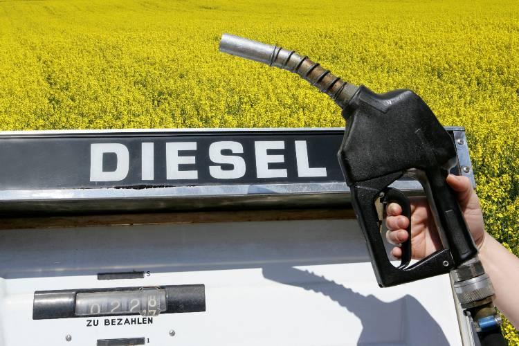 Principais diferenças entre diesel e biodiesel