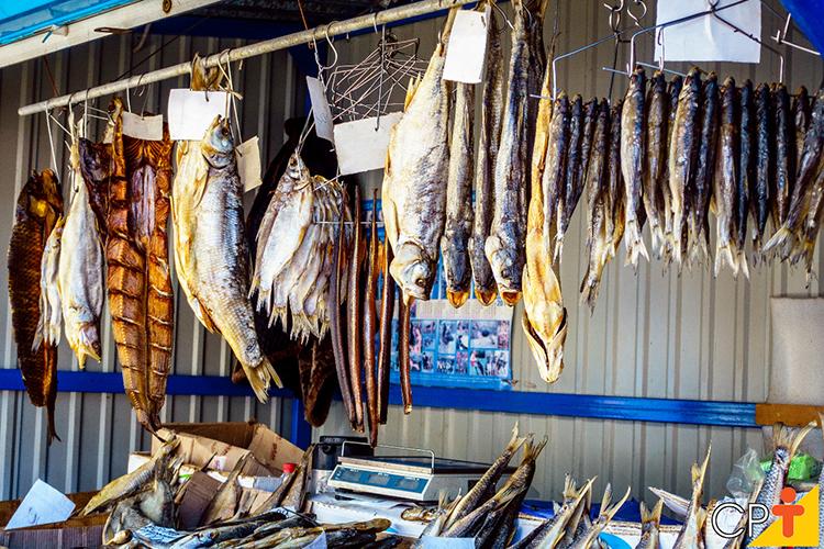 Comércio de peixes - imagem ilustrativa