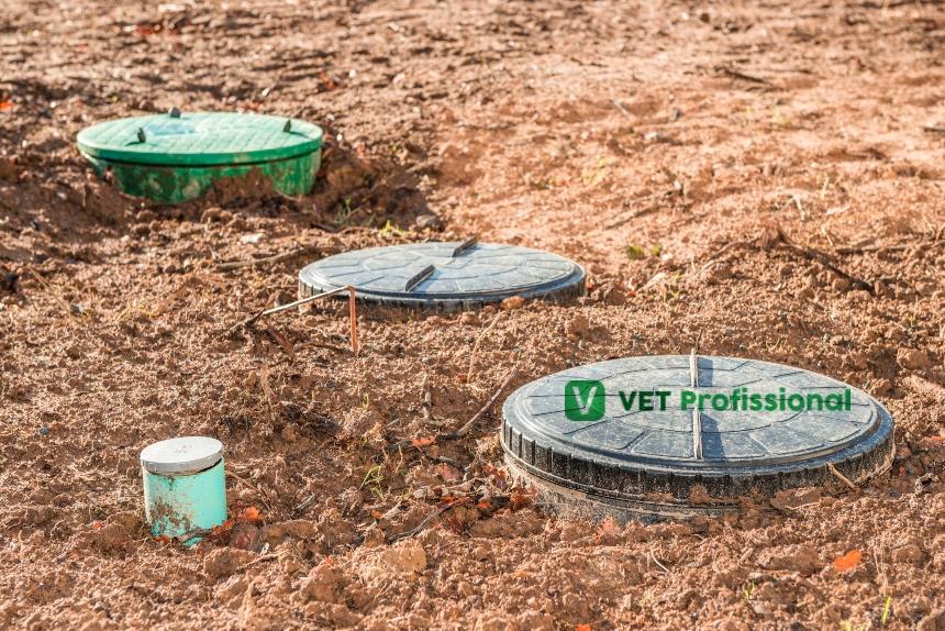 Importância da fossa séptica biodigestora para o meio rural   Artigos VetProfissional