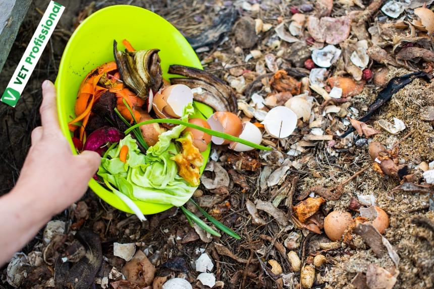 Quando optar pela compostagem de dejetos nas propriedades rurais?   Artigos VetProfissional