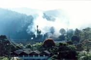 As avaliações de impactos ambientais são estudos realizados para identificar, prever, interpretar e prevenir as consequências ou efeitos ambientais.