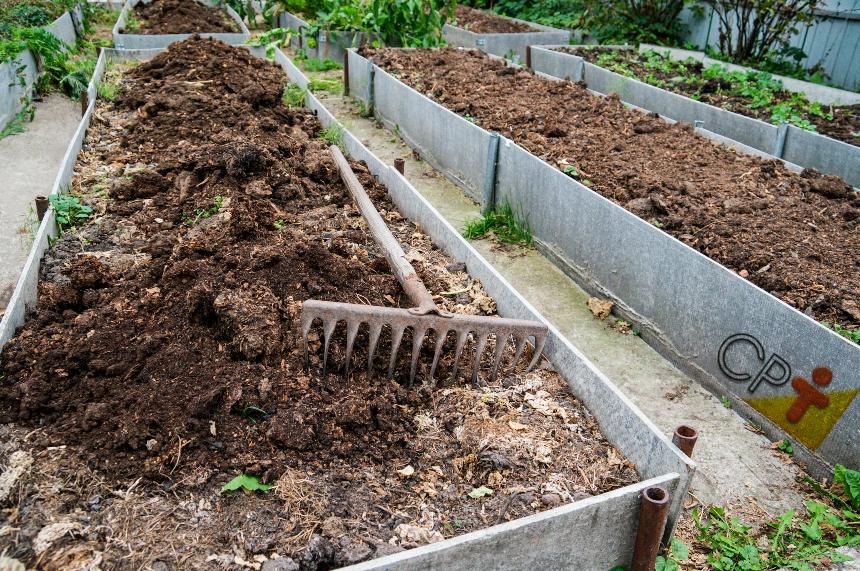 Horta escolar em lajes cimentadas: isso é possível?   Artigos CPT