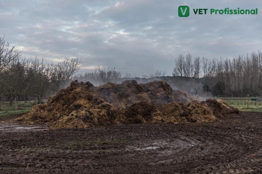 Esterquia: aproveitamento de resíduos e dejetos produzidos em fazendas   Artigos VetProfissional