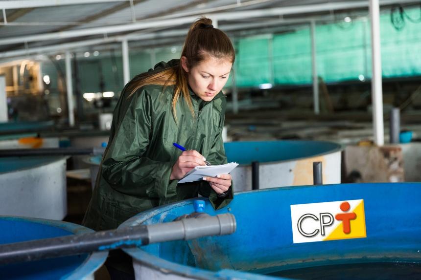 Equipamentos para criar camarões de água doce   Artigos CPT