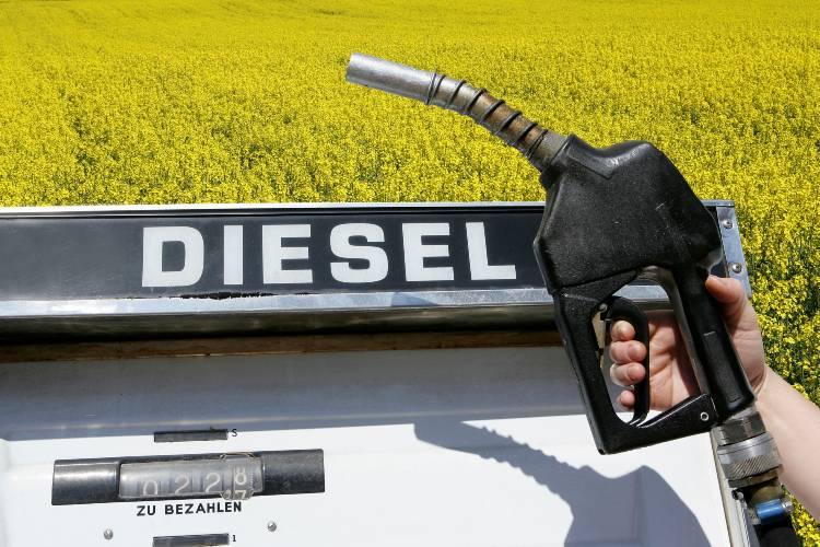 Tudo o que você precisa saber sobre combustíveis fósseis