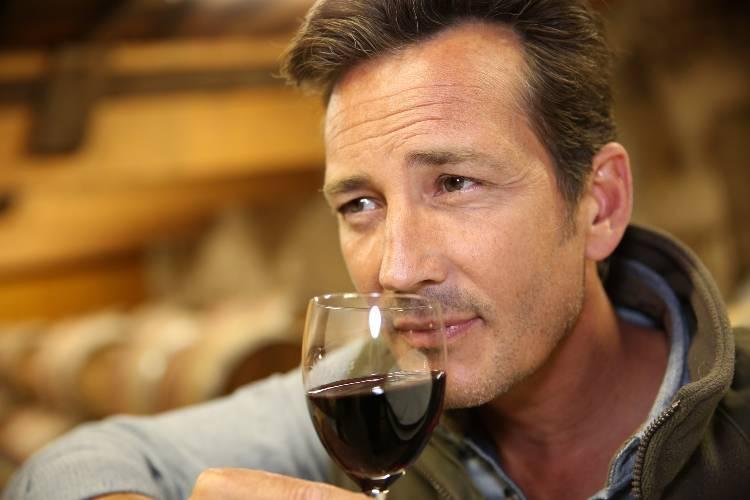 6 principais características dos vinhos