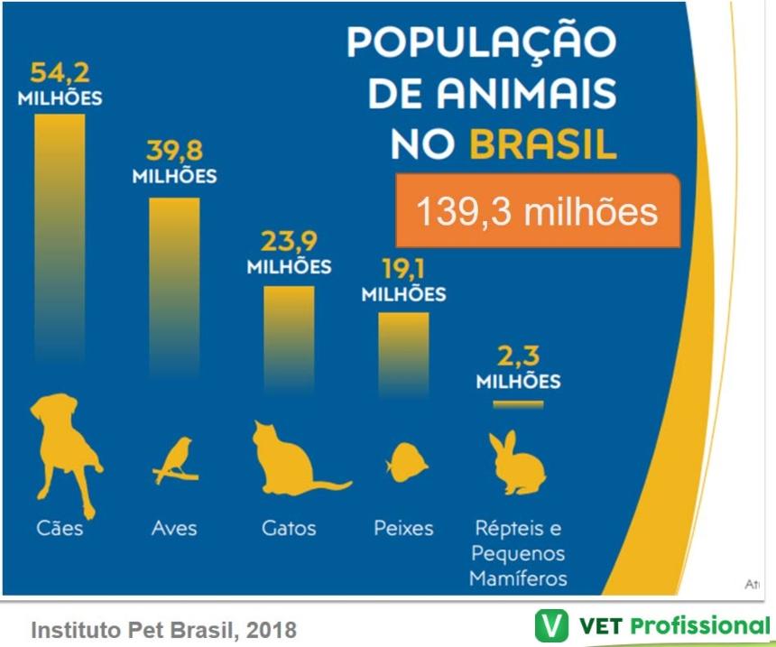 Número de pets não convencionais no Brasil   Artigos VetProfissional