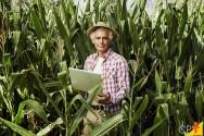 Planejamento financeiro da propriedade rural: como fazer?