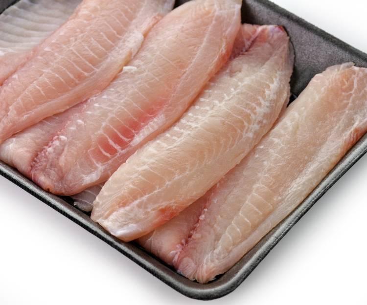 7 tipos de processamento de pescado