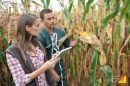 Aprenda agora sobre controle biológico de pragas agrícolas