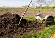 Economia na fazenda? Trate e reutilize os resíduos animais