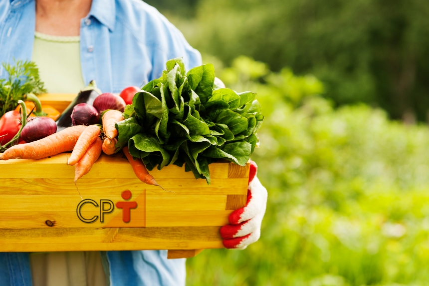 Dica ao Horticultor: higienize frutos e vegetais antes de comercializá-los   Dicas CPT