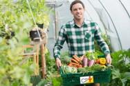 7 dicas de sucesso para quem vai processar hortaliças