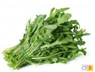6 recomendações para plantar rúcula