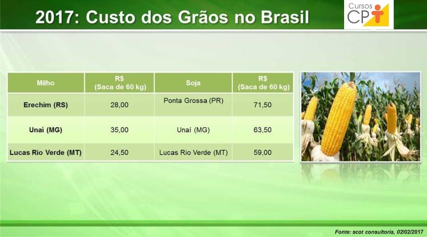 Preço da saca de milho e soja em diferentes cidades do Brasil Artigos CPT
