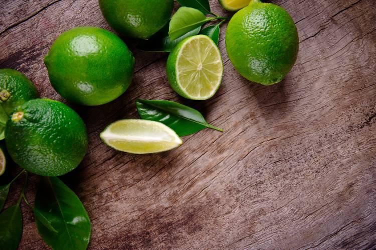 Tire suas dúvidas sobre plantio de limão Taiti
