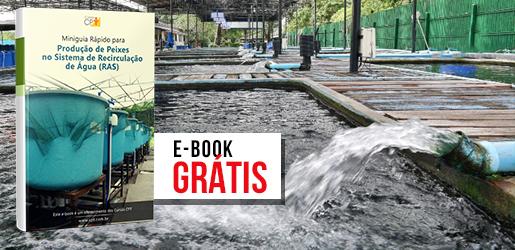 E-book RAS