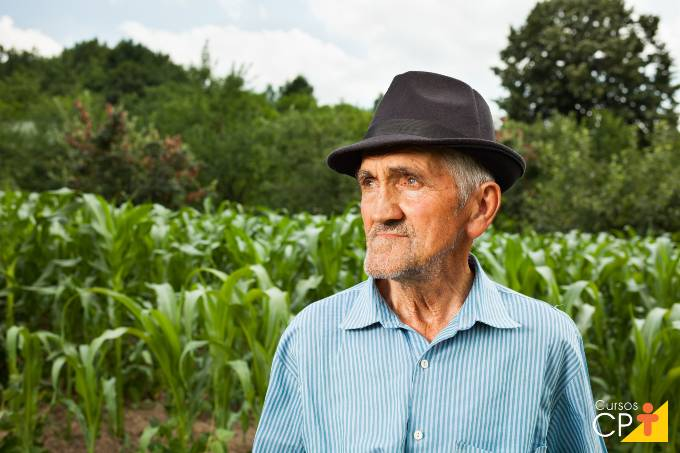 Controle da antracnose no milho e na soja