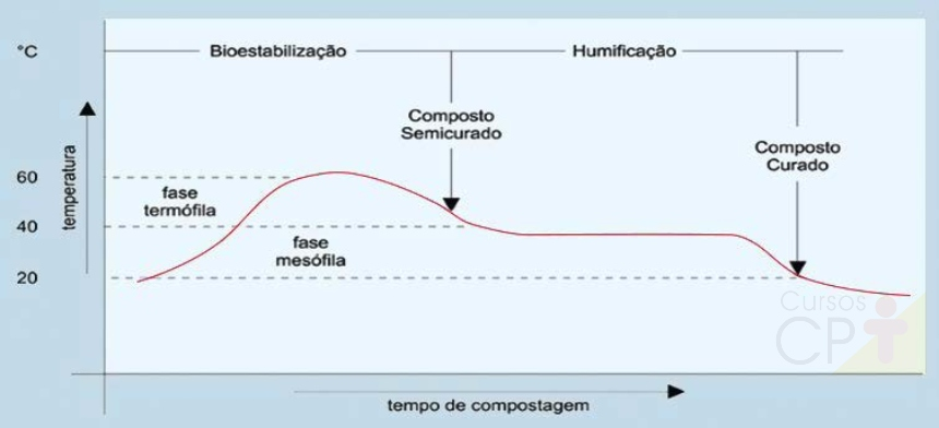Fases da compostagem Artigos CPT