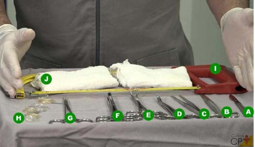 Material necessário para descorna cirúrgica: (A) bisturi, (B) tesoura, (C) pinça dente de rato, (D) pinça hemostática, (E) pinça backhaus, (F) pinça allis, (G) porta agulha, (H) fio de náilon 0,60 e agulha, (I) serra comum, (J) gaze