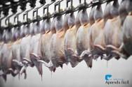 Preparo de frangos de corte abatidos para a comercialização