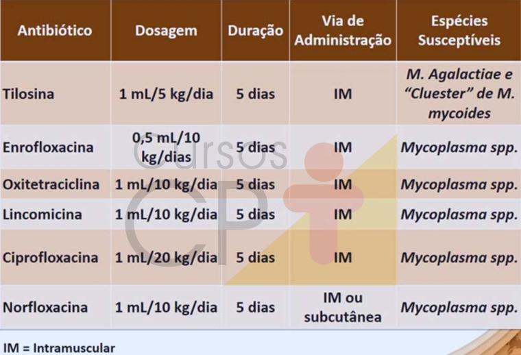 Opções de tratamento para micoplasmose    Artigos CPT