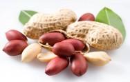 Dicas para plantar amendoim de forma simples