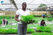 Qual a importância da agricultura orgânica para o mundo?