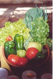 Um dos produtos da granja era a cestinha da roça coposta por hortaliças, entregue de porta em porta.