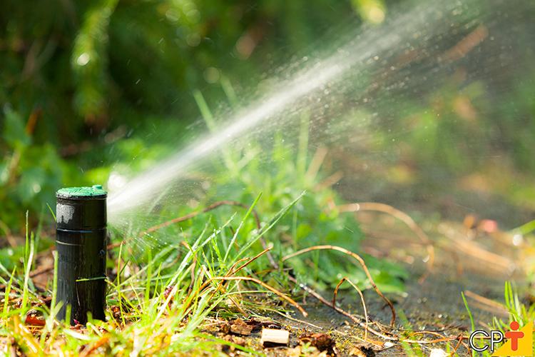 Irrigação - imagem meramente ilustrativa
