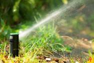Quais cuidados devo ter com os sistemas de irrigação?