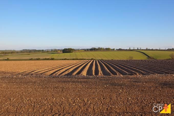 O que é e como fazer o mapeamento da fertilidade do solo?