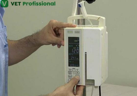 Regule a bomba de infusão de acordo com a taxa de hidratação do paciente em mL/h.
