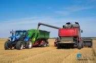 É necessário planejar a colheita mecanizada de grãos para reduzir as perdas? Sim!