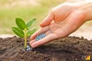 Quais as vantagens dos fertilizantes de liberação progressiva?
