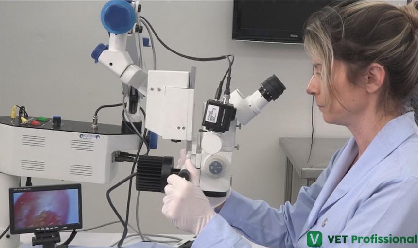 Microscópio cirúrgico: você conhece esse aparelho?