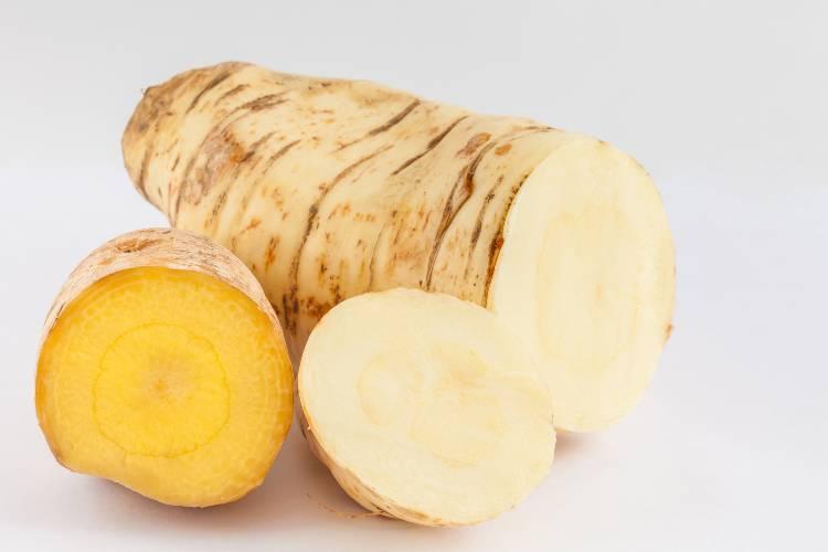Quer plantar batata-baroa? Confira dicas de ouro!