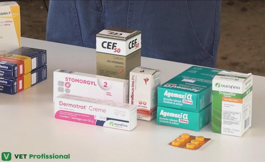 Drogas antimicrobianas: conheça esse tipo medicamento