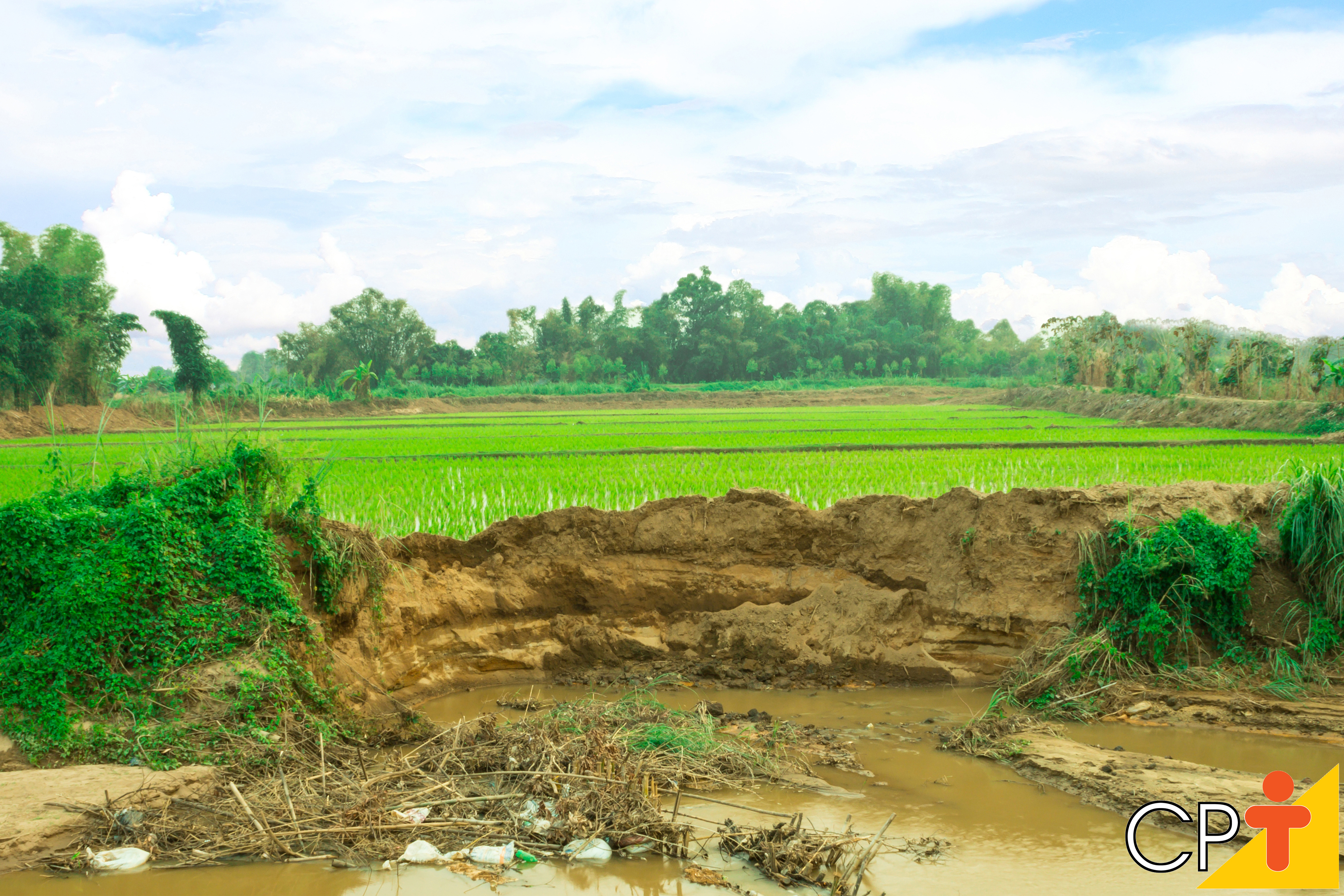 Impacto ambiental - imagem meramente ilustrativa