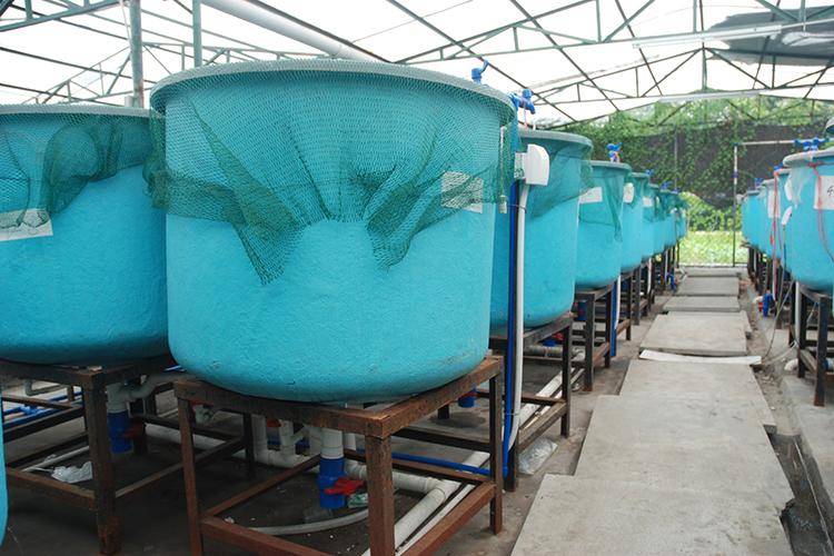 Sistema de recirculação de água - imagem meramente ilustrativa