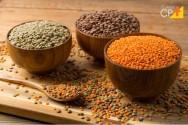 Você sabe como plantar lentilha?