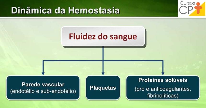 A dinâmica da hemostasia Artigos CPT