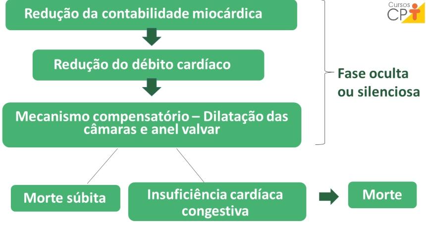 Patogenia da cardiomiopatia dilatada.   Artigos CPT