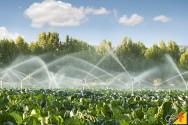 O consumo de energia elétrica no sistema de irrigação