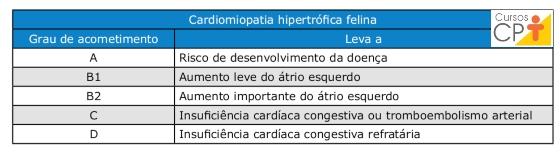 Graus de acometimento da cardiomiopatia hipertrófica felina   Artigos CPT