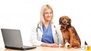 Sr. veterinário, você conhece o princípio da megacariocitopoiese?