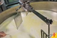 Quais fatores interferem na produção de derivados do leite?