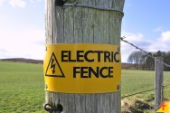 Cercas elétricas: como escolher e como elas funcionam?